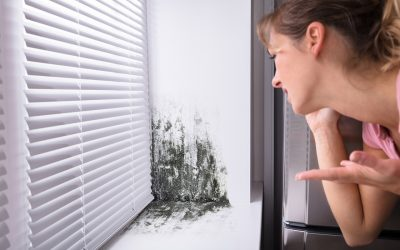 4 Signs of a Mold Problem In the Home